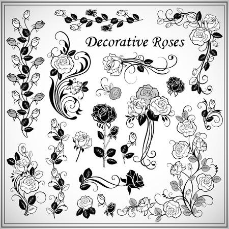Set of decorative roses Vector