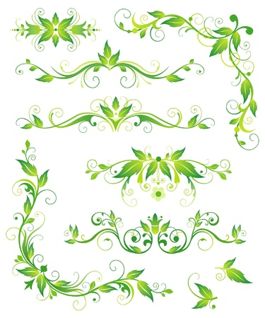Floral green  elements for design Vector