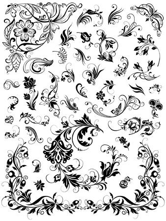Set of  floral elements for design 일러스트