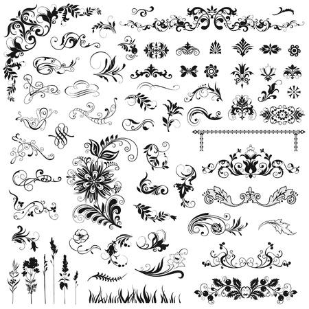 calligraphique: Ensemble d'�l�ments floraux vecteur