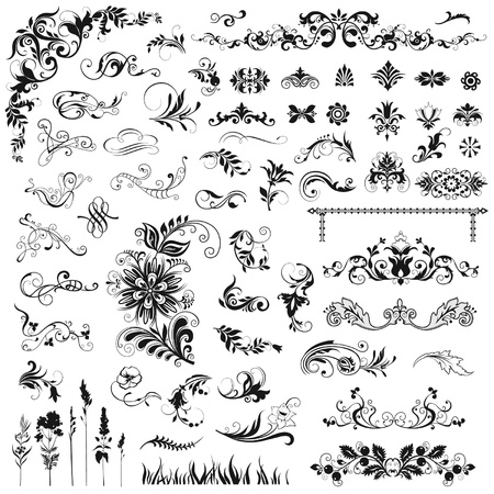 calligraphic design: Set of vector floral elements