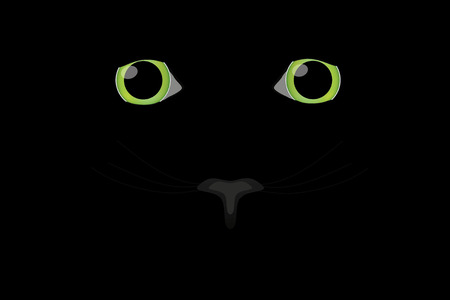 undomesticated: cat