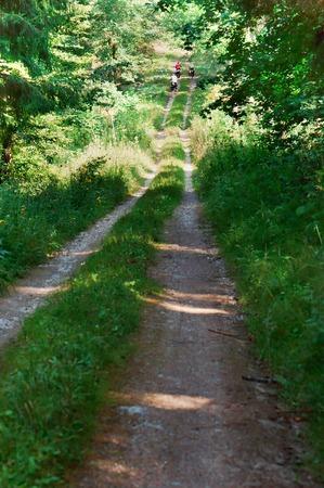 travel through the woods, ride the bike on dirt roads Banco de Imagens