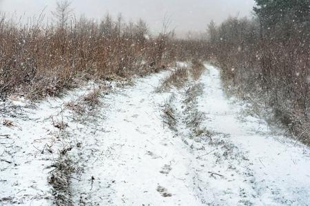 Feld schneebedeckte Straße, Straße im Feld und Schneesturm