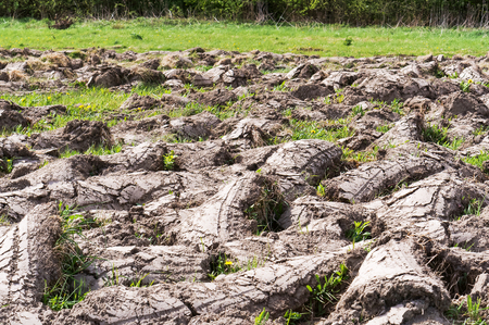 ploughed virgin land, drought in the fields Stockfoto
