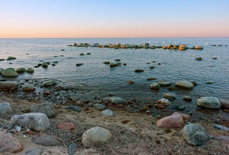 dawn on the seashore, rocks and swans in the sea in the evening