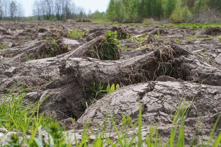 plowed field, preparation of fields in the spring 写真素材