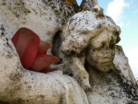 angel headstone: Close-up photo of and angel carved into a white headstone. There is a silk flower resting on her arm.