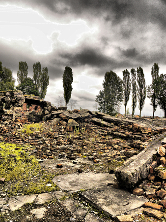A pile of concretebrick rubble with trees in the background and an atmopheric angry looking sky.