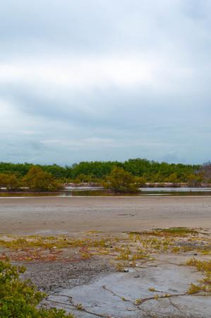 escape: Lonely beach escape