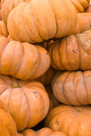 lined up: pumpkins lined up for buyers Stock Photo