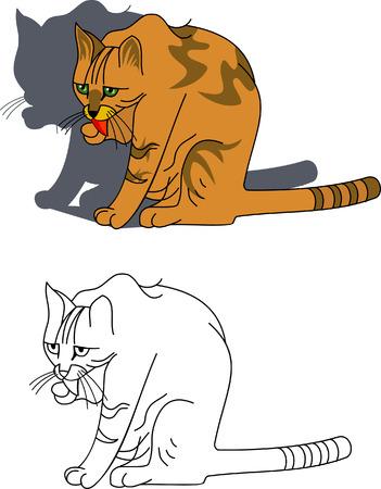 Roja con un gato sentado la lengua colgando