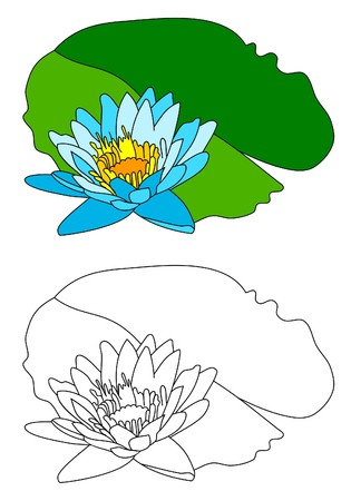 water lily vector image Stock Vector - 4406120
