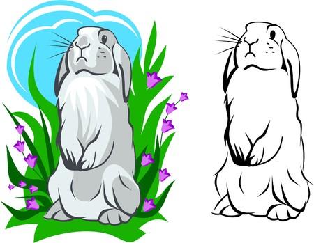cute creature: White bunny standing Illustration