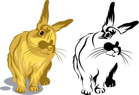fleecy: Cute bunny