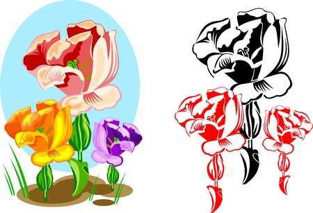 Varicoloured tulips on a flowerbed Vector