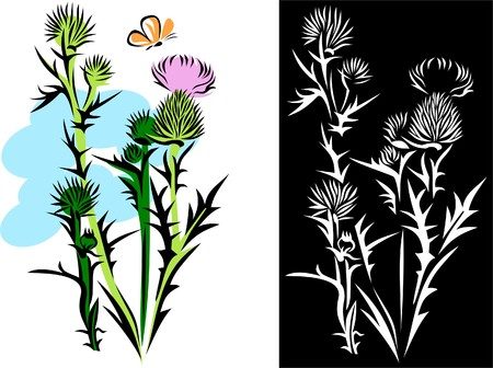 thistle: The thistle Illustration