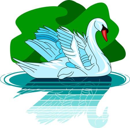 swan Stock Vector - 4719179