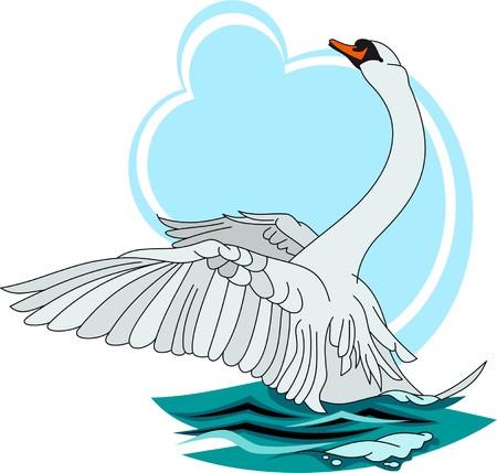 swan Stock Vector - 4719177