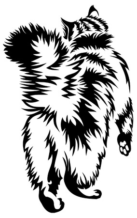 furry cat's back Stock Vector - 7000945