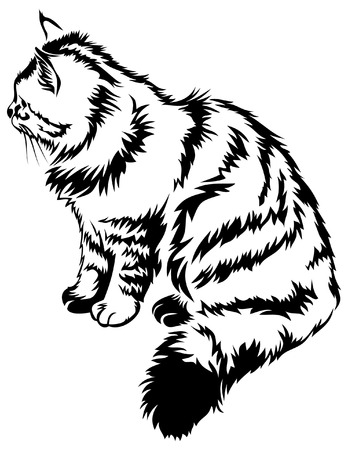 contour image of striped cat Vector
