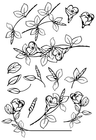 bookish: floral vector design elements