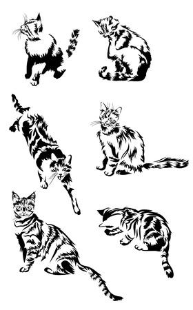 silhouette gatto: Vector silhouettes gatti Vettoriali