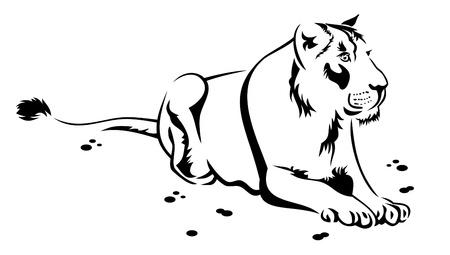 lioness: Lioness Illustration