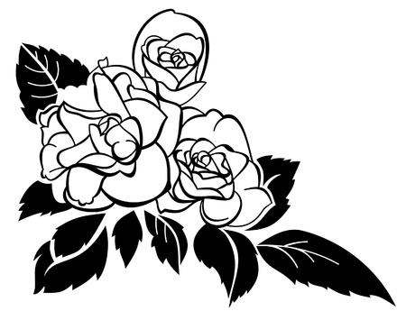 Three vector roses Vector