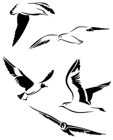 gulls: vector seagulls