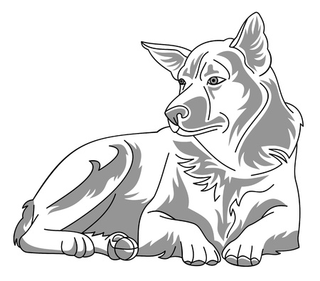 Dog Stock Vector - 18903325