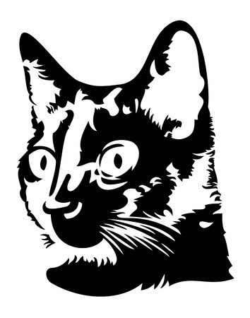 Black and white image of a head of a black cat with big eyes