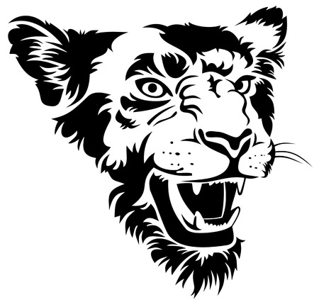 growling: lioness growling