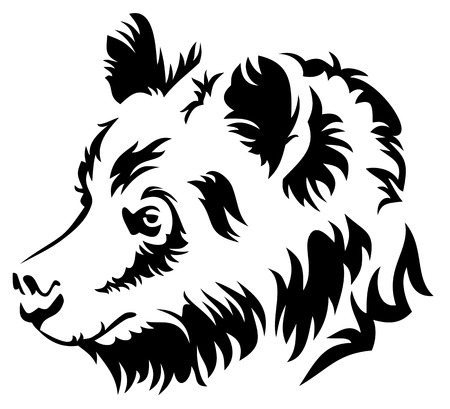 Vector  image of a wild bear isolated on a white background Vector