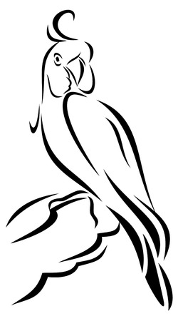 Outline image of a parrot