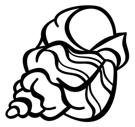 cockleshell: Contour image of a shell