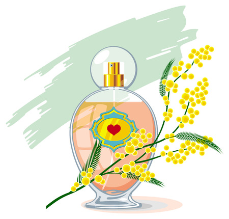 Bottle of perfume and branch of mimosa isolated on a white background
