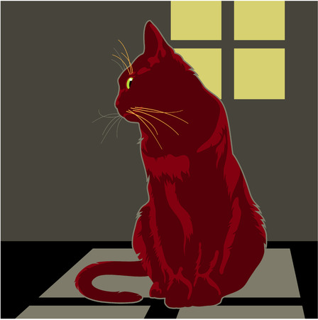 repose: Red cat is sitting under the window