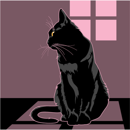 tranquility: Black cat is sitting under the window Illustration