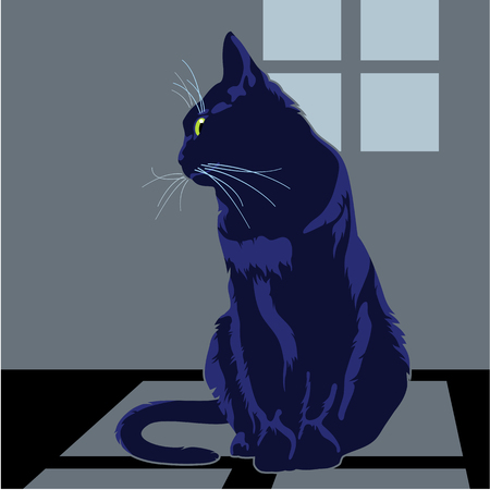 Black cat is sitting under the window Illustration