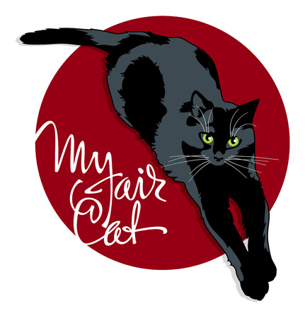 black and red cat: Black cat on a red background