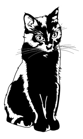 Black cat silhouette isolated on a white background