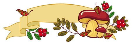 cranberries: Horizontal banner with mushrooms, cranberries, falling leaves and free space for text. Vector clip art. Illustration