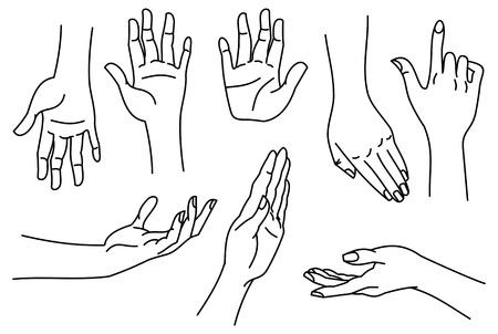 wrists: Outline images of hands. Contour human palms, wrists, gestures on a white background. Vector clip art. Illustration