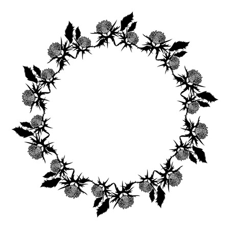 Round frame with thistle silhouette. Vector clip art. Reklamní fotografie - 81916940