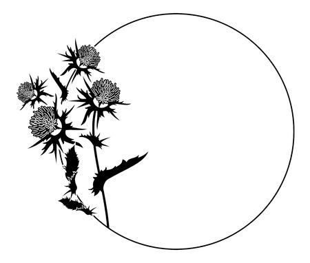 Ronde frame met distelsilhouet. Vector clip art. Stock Illustratie