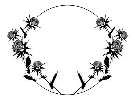 Round frame with thistle silhouette. Vector clip art. Reklamní fotografie - 81916942