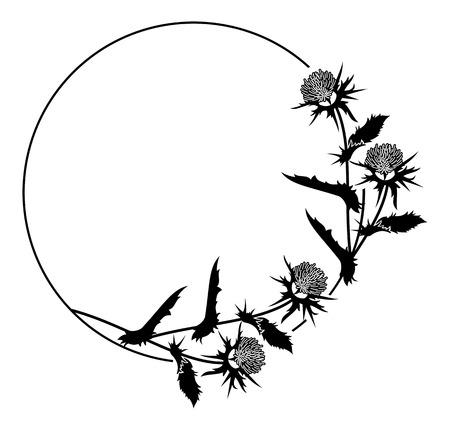 Telaio rotondo con silhouette del cardo. Vettore clip art. Archivio Fotografico - 81916947
