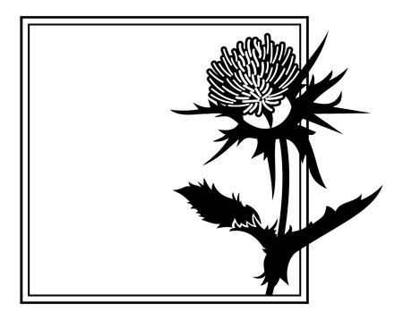 Square frame with thistle silhouette. Vector clip art. Çizim