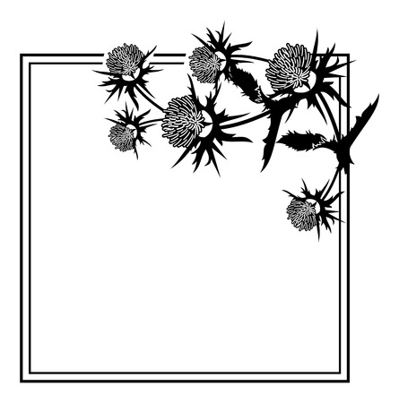 Square frame with thistle silhouette. Vector clip art. Ilustrace